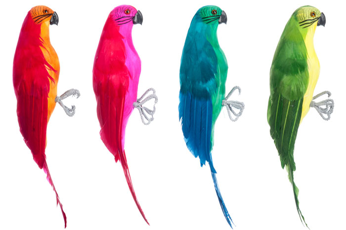 Bring a holiday tropical vibe with these poppy parrot accessories: 4 pack of coloured parrots